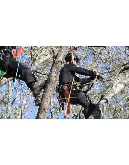 Sterling Scion 11.5mm Orange Climbing Rope (Sewn Eye)