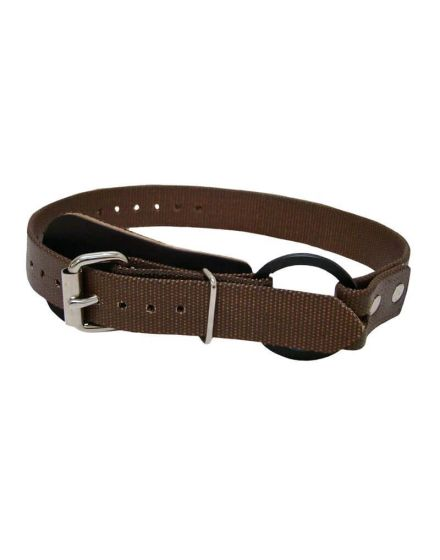 buckingham bottom straps