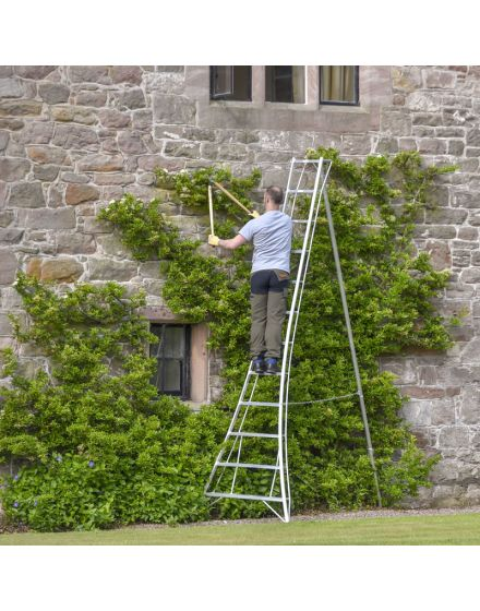 Hendon GMF Standard Tripod Ladder