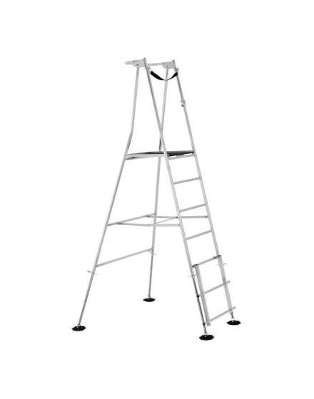 Henchman Hi-Step Ladder