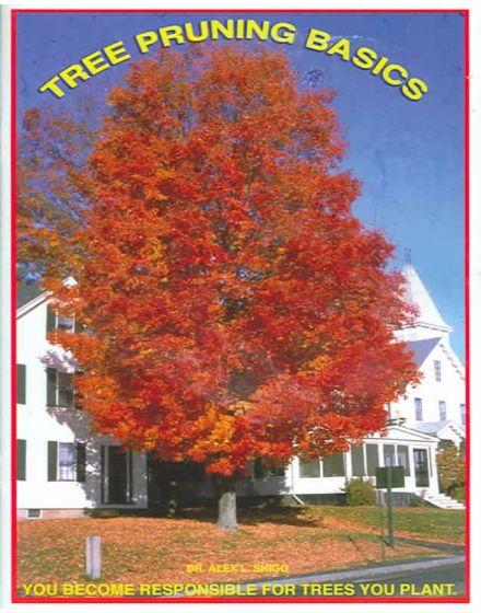 Tree Pruning Basics By Alex Shigo