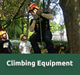 Arboritst Climbing