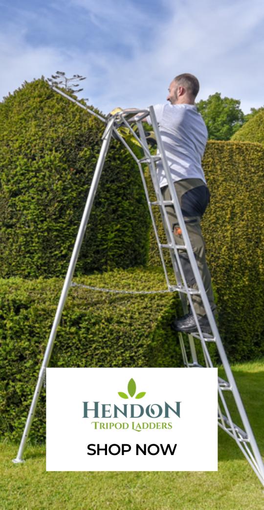 Hendon Ladders