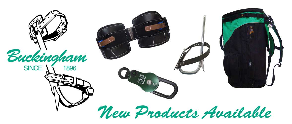 buckingham new products